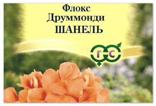 Флоксы- семена