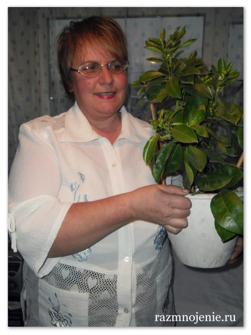Пестова Ольга Алексеевна со своим каламондином.