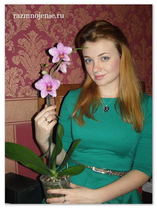 Лилия Андреевна со своим питомцем Орхидеей Фаленопсис.