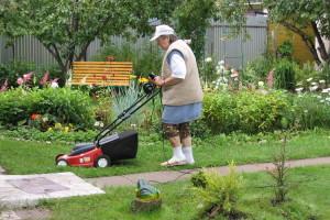Как приблизиться к качеству английского газона — советы и рекомендации