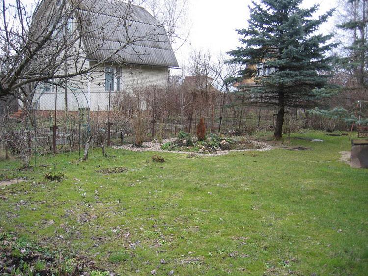 Ранняя весна. Проплешины. Нашей лужайке требуется небольшой ремонт.