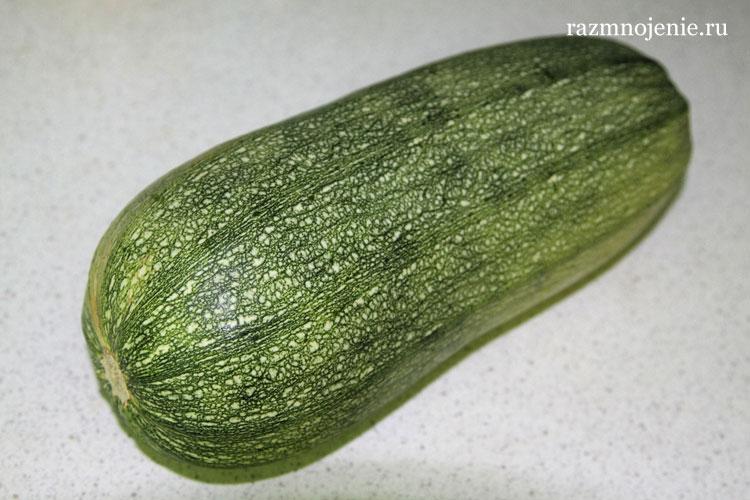 Этот овощ только что с грядки. Пошаговый рецепт фаршированных кабачков с фотографиями.