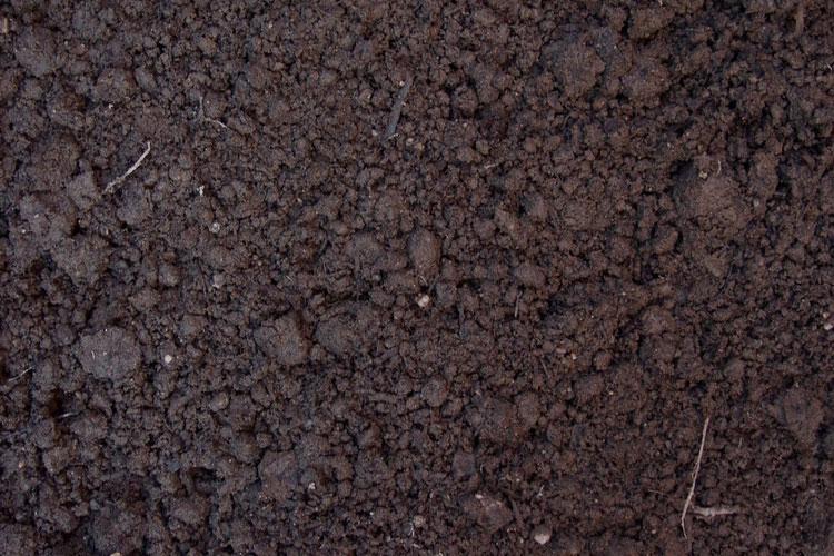 Определение качества и состава почвы.