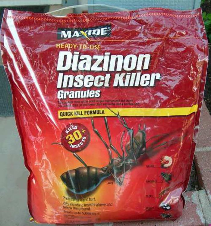 Диазинон — враг насекомых.