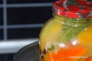 Перец, фаршированный белокочанной капустой — нарядная и вкусная закуска для праздничного стола